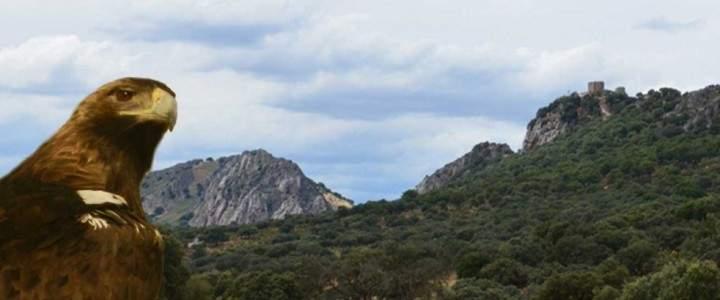 Panoramica de Monfragüe