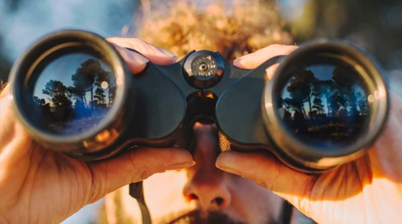 Los mejores prismáticos para la observación de aves