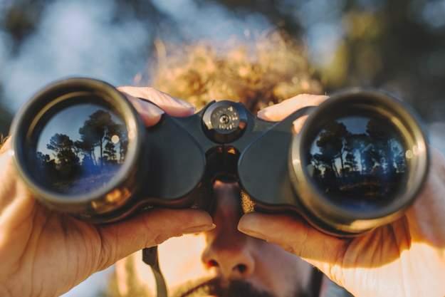 prismáticos para la observación de aves