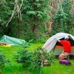 5 increíbles gadgets para acampar por menos de 50€