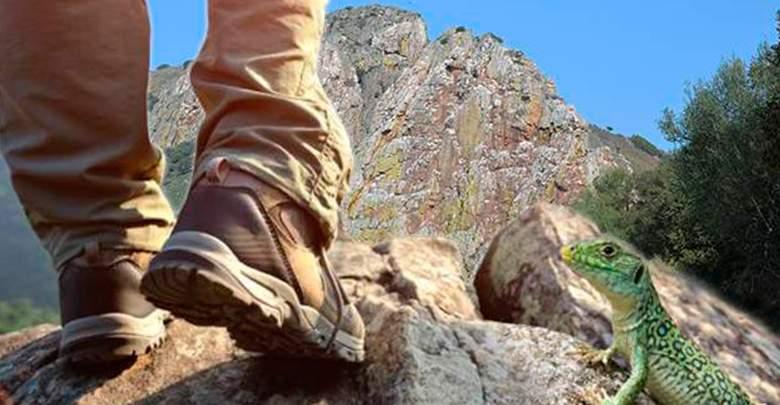 Mejores botas de senderismo para hombres