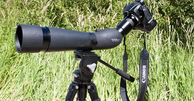 Las formas fáciles de fotografiar las aves de jardín