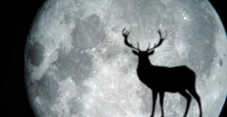 Luna Llena del Ciervo