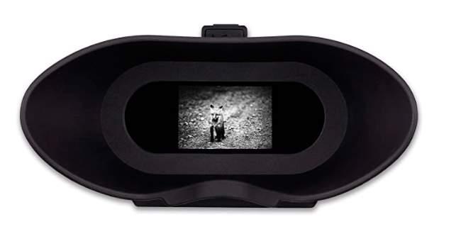 Nightfox Swift - Gafas de visión Nocturna por infrarrojo Digital