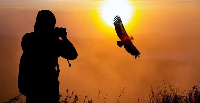 Equipamiento fotográfico para la fotografía de naturaleza