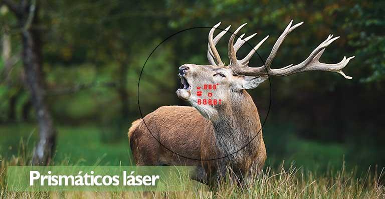 prismáticos VORTEX FURY 10×42 laser