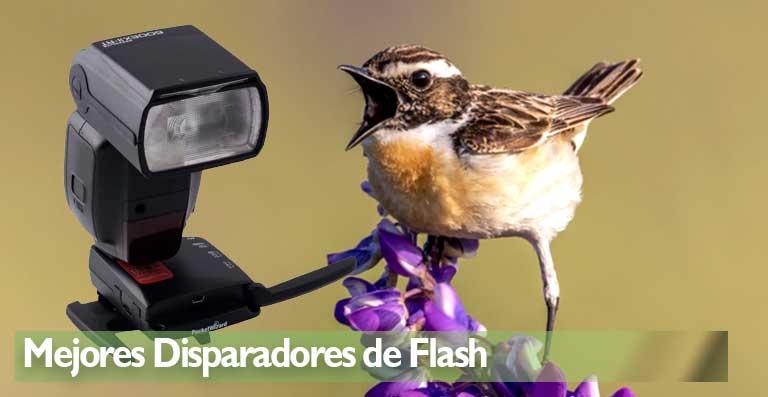 mejores disparadores de flash para su cámara