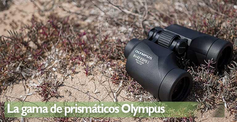 La gama de prismáticos Olympus